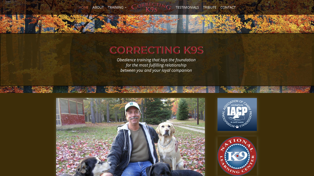 Home Page of the Correcting K9s website project